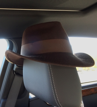 Fedora on headrest of car