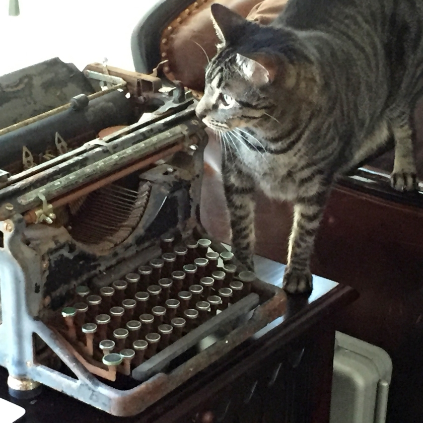 Lucca and the Underwood typewriter