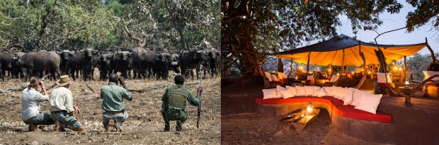 Robin Pope Safaris - photo of water buffalo and camp at Tena Tena.