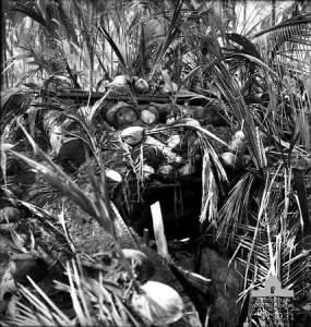 Japanese bunker in Papua New Guinea.