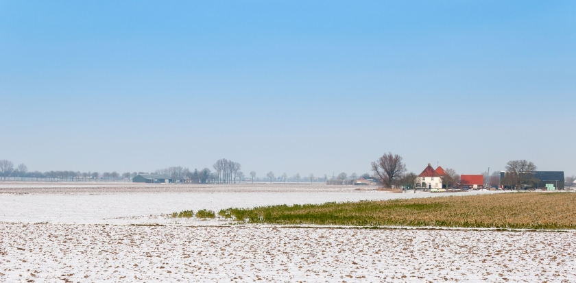 Dutch field in the snow. Copyright: rmorijn', 123RF Stock Photo