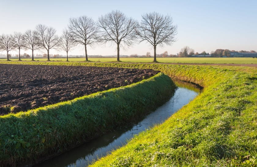 Typical tree-lined fields and canals in the Netherlands. Copyright: rmorijn with 123RF Stock Photo.