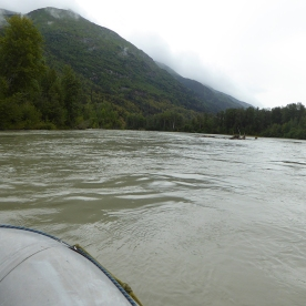 Rafting down the Chilkat river. No rapids, so easy to photograph the eagles.