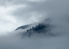 Foggy start to the morning, as we headed toward Tracy Arm Fjord. Photograph, Ann Fisher.