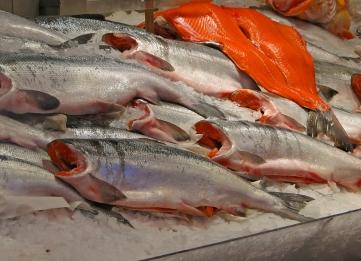 Sockeye Salmon at Seattle's Pike Place Market.