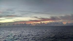Sunrise on the Atlantic Ocean. Photograph: Bill Palmer.