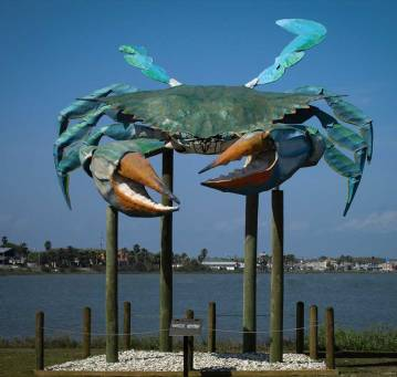 Big blue crab on the Rockport water front.