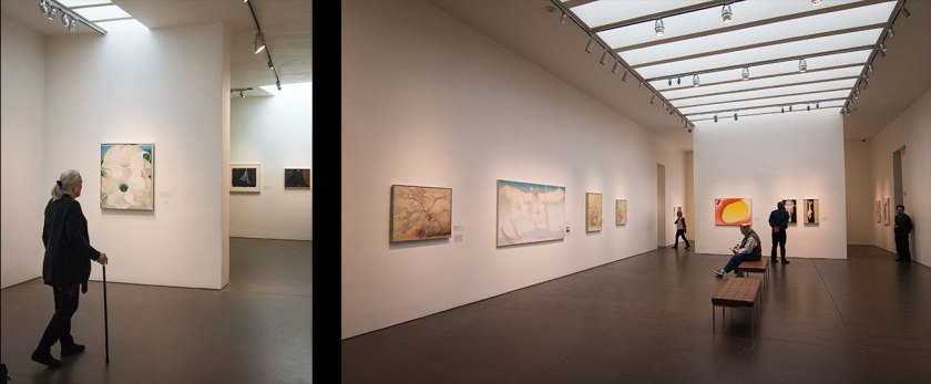 Two galleries at the Georgia O'Keeffe Museum