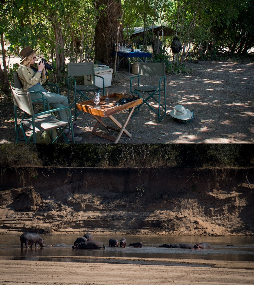 Luangwa Bush Camp Robin Pope Safaris Walking Safari