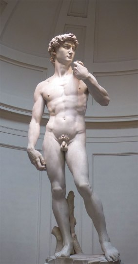 We saw the David on our walking tour of Florence.