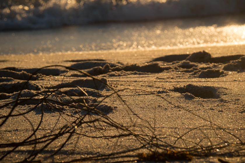 Sun on the sand on Ft. Lauderdale Beach