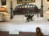 Hemingway House -- Ernest and Pauline's bedroom