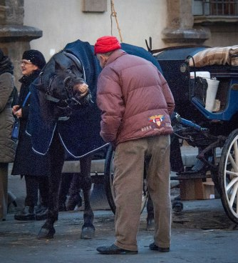 Carriage Horse in Florence Italy