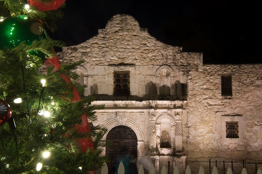 Alamo and a Christmas Tree