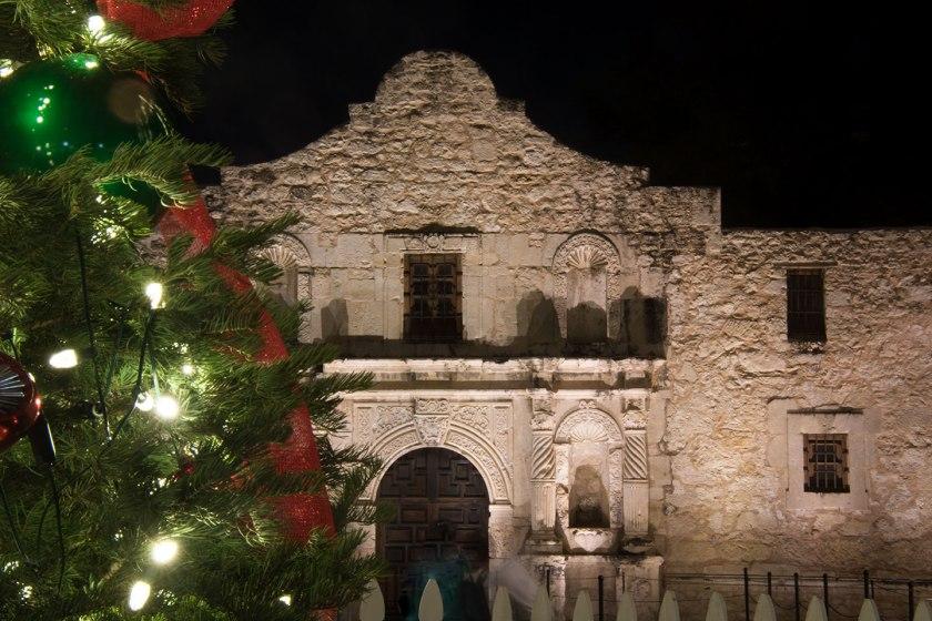 Alamo and a Christmas Tree