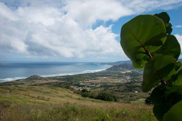 View towards the Atlantic in Barbados