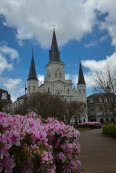 St. Louis Cathedral and George Tabor azaleas.