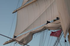 Furling the Main Sail Royal Clipper