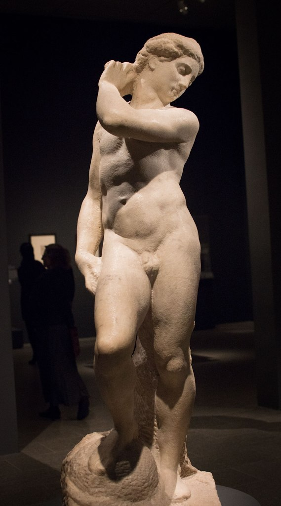 Michelangelo, Apollo-David (unfinished). Museo Nazionale del Bargello, Florence. displayed in the exhibit Michelangelo Divine Draftsman and Designer exhibit at the Metropolitan Museum of Art in New York