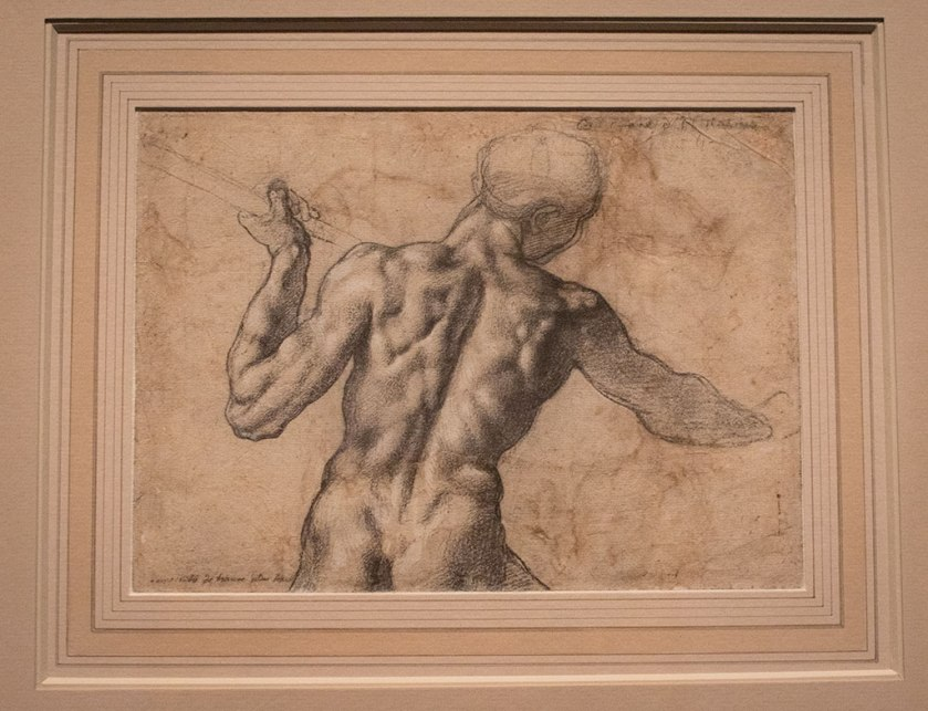 Michelangelo, Study of the Torso of a Male Nude Seen from the Back displayed in the exhibit Michelangelo Divine Draftsman and Designer exhibit at the Metropolitan Museum of Art in New York